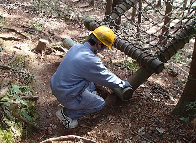 木製遊具点検